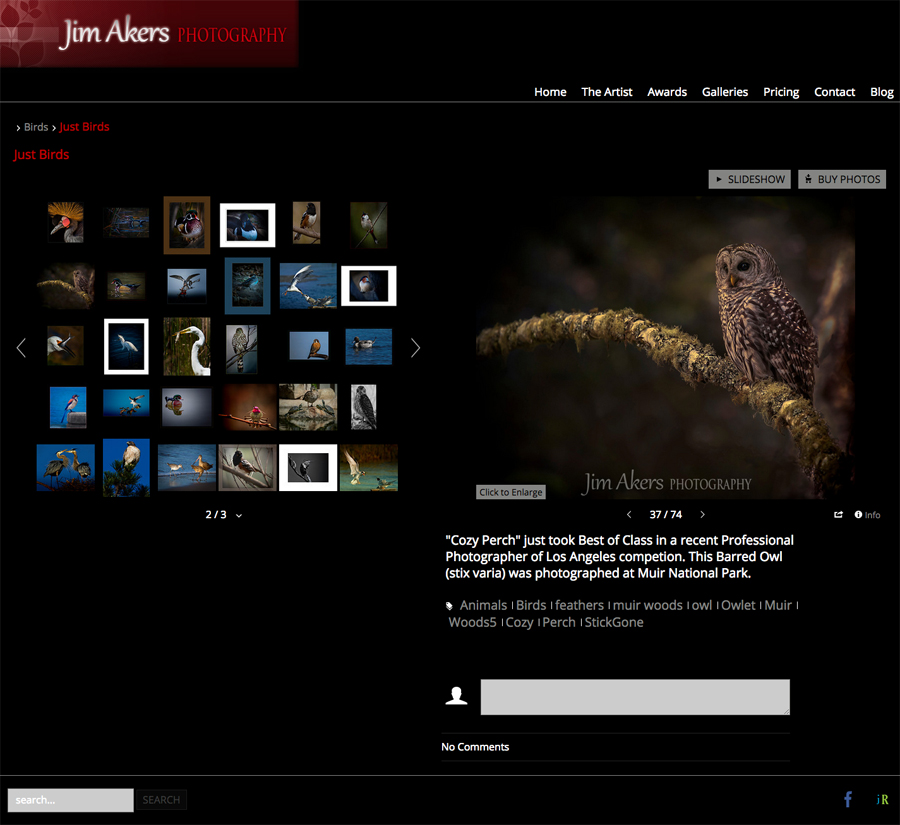 smugmug-customization-jim-akers-photograph-california-award-winning-photography-03