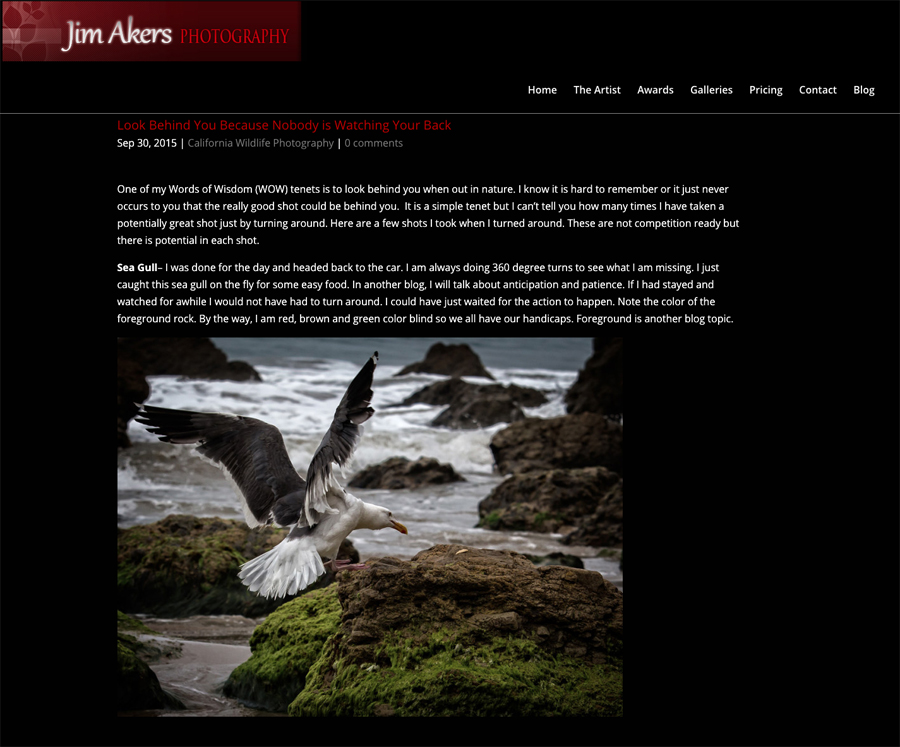 smugmug-customization-jim-akers-photograph-california-award-winning-photography-04