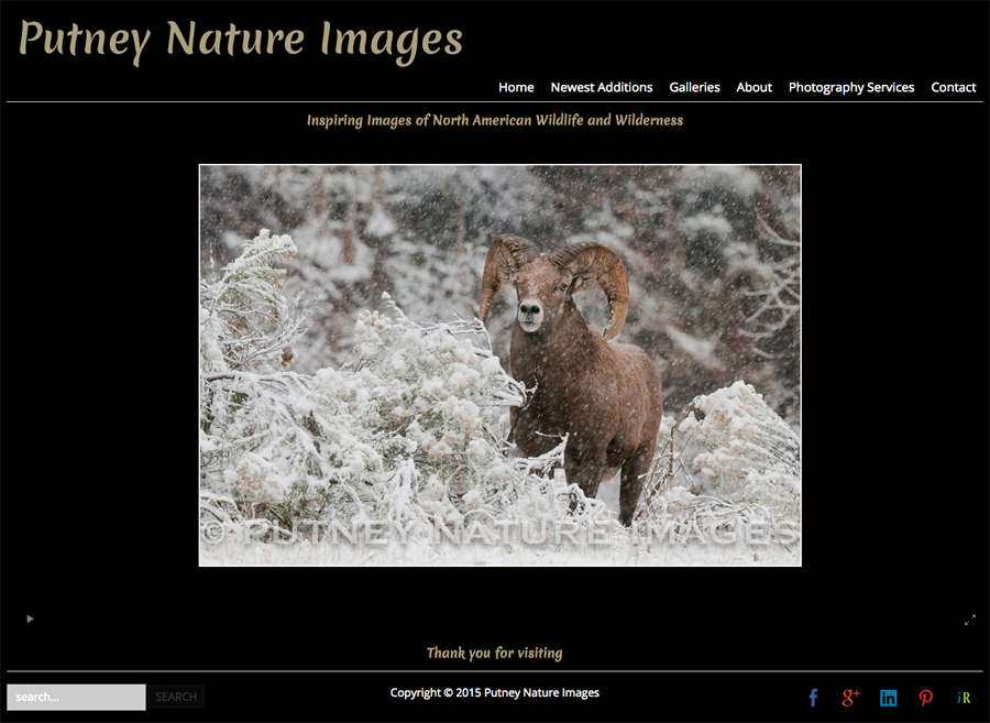 new-SmugMug-Customization-Putney-Nature-Images-Colorado-Wildlife-Nature-Photography-jrcustomization-01