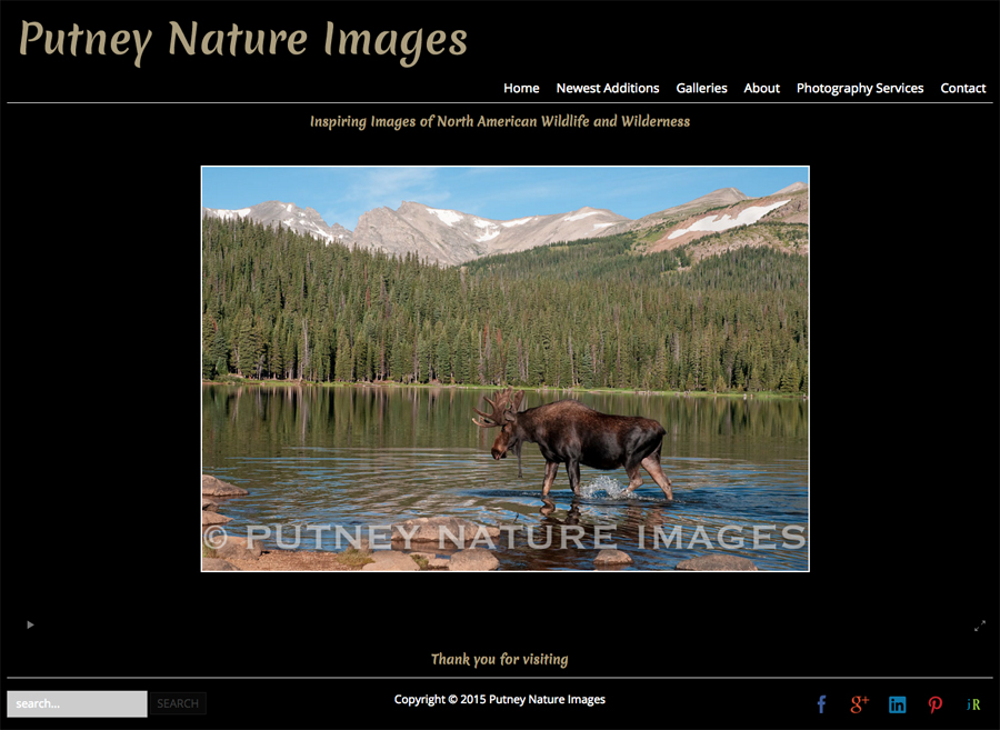 new-SmugMug-Customization-Putney-Nature-Images-Colorado-Wildlife-Nature-Photography-jrcustomization-05