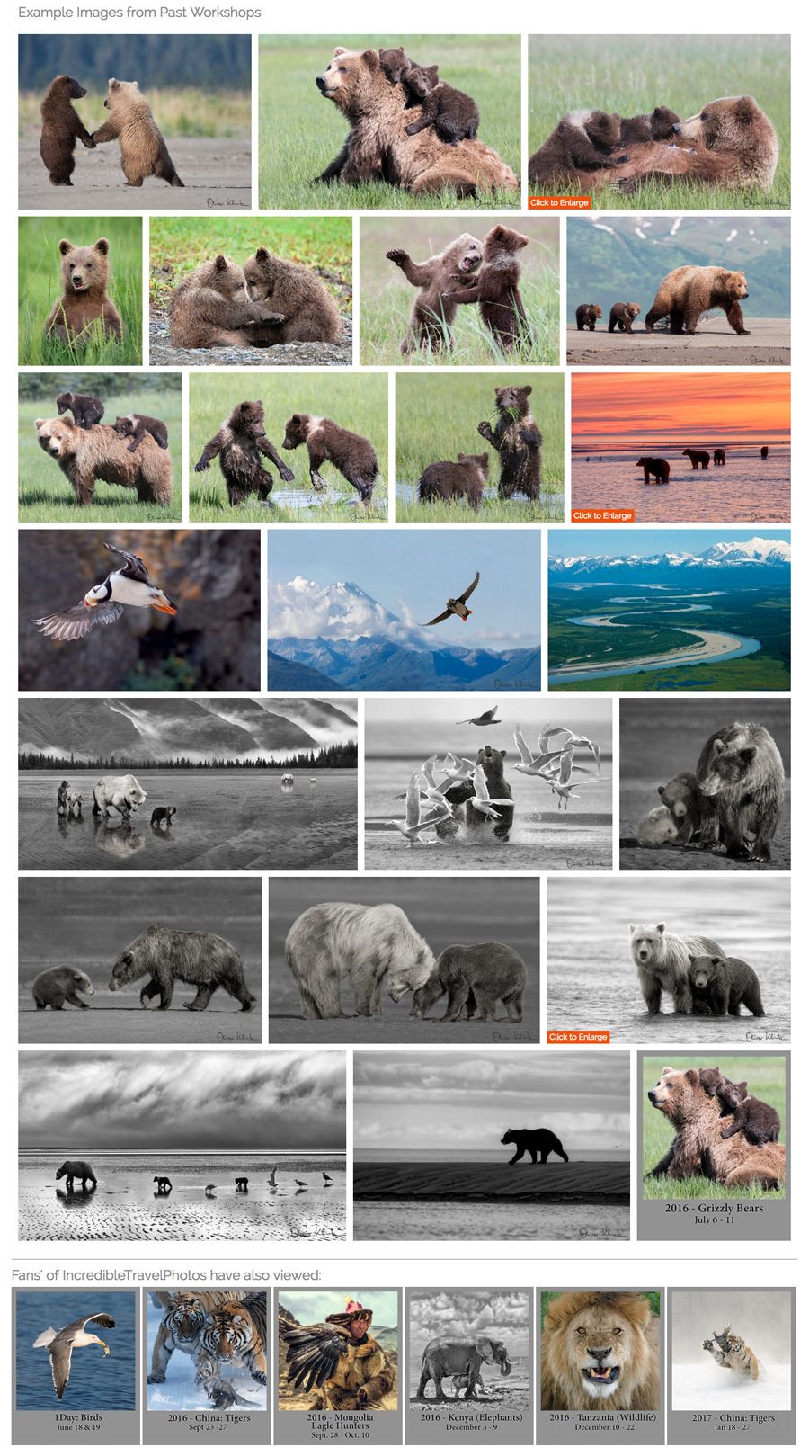 new-smugmug-customization-incredible-travel-photos-examples-jr-customization
